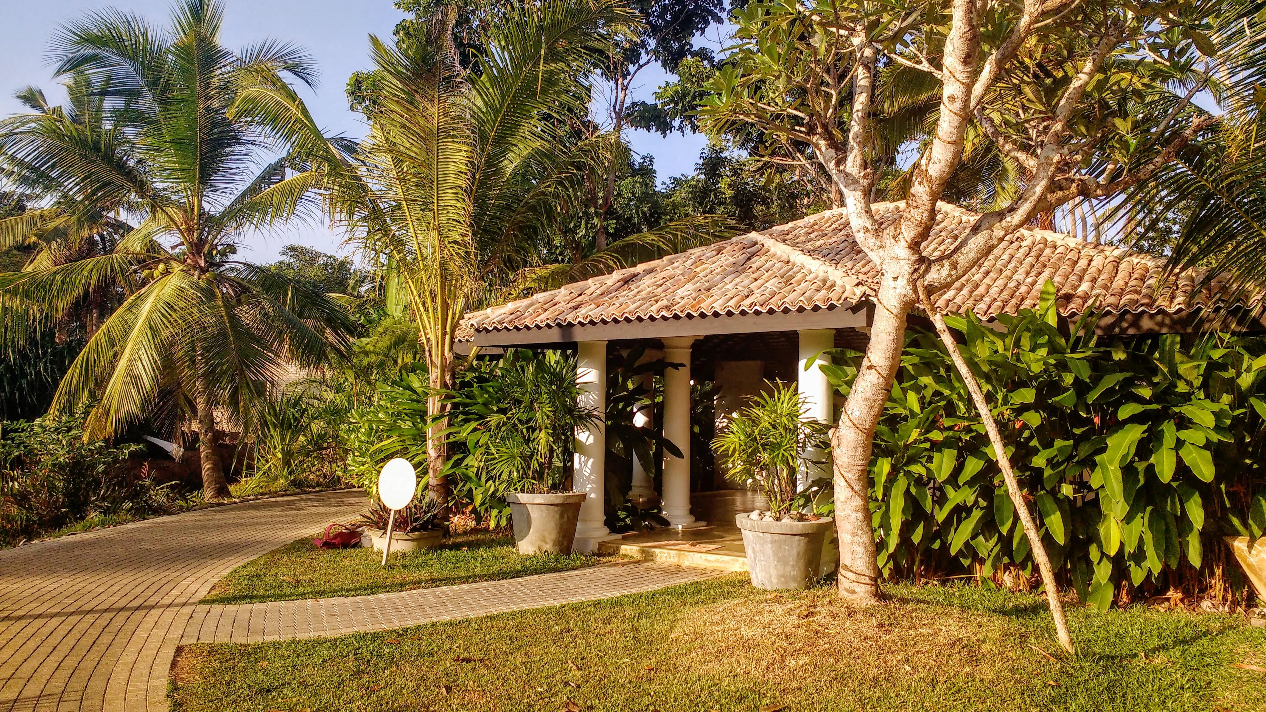 The Yoga Shala at Soul & Surf Sri Lanka
