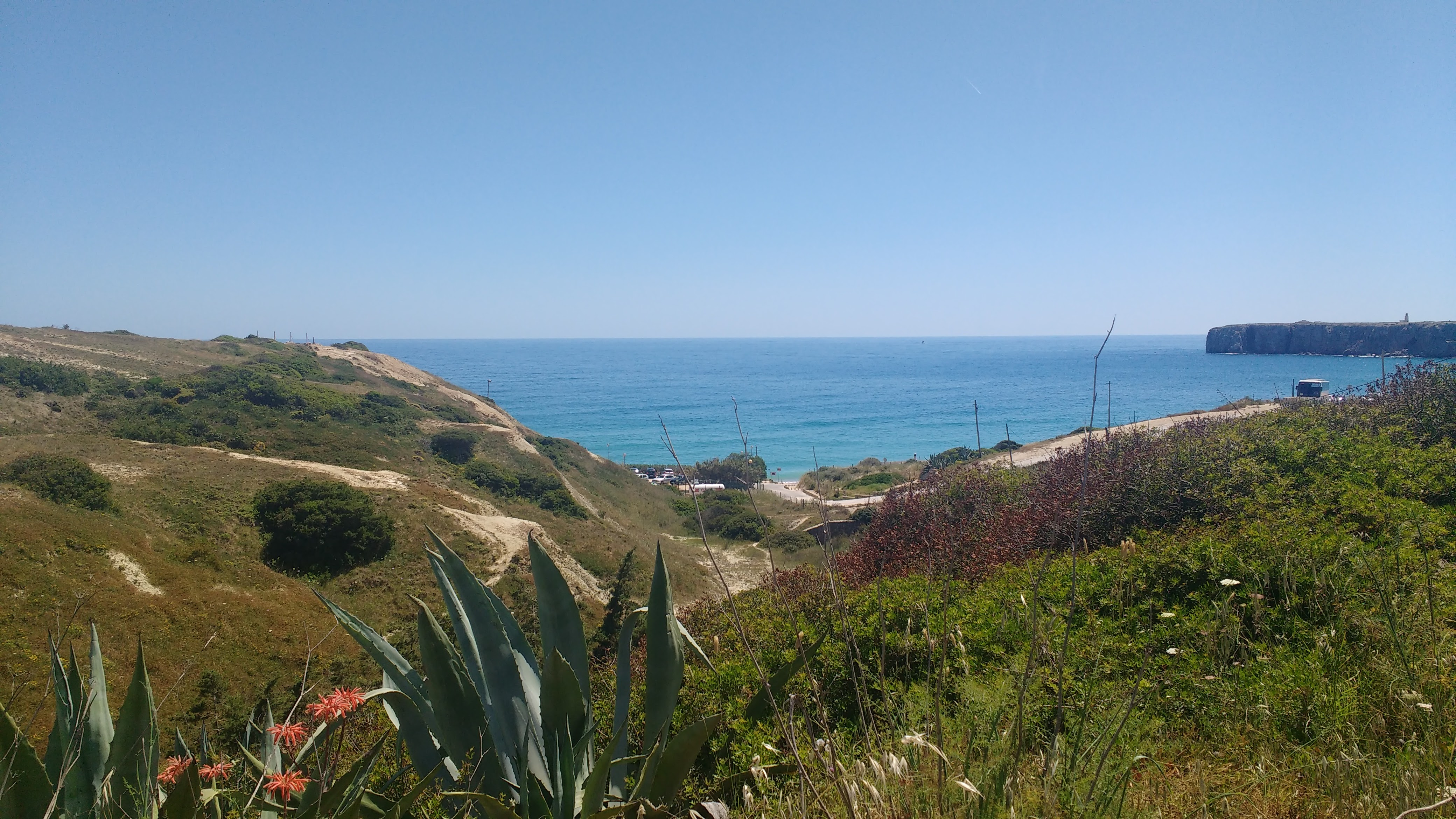 Praia da luz algarve surf yoga portugal retreat saltwater yoga ROXY longboard waves soul healthy